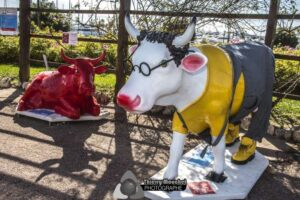 Cow Parade Cannes